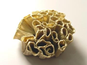 Embebida I 2009 Material textil embebido en porcelana 5.4 x 13.5 Ø cm (2.1 x 5.3 Ø in)